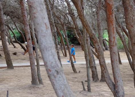 Punta della Suina la pineta