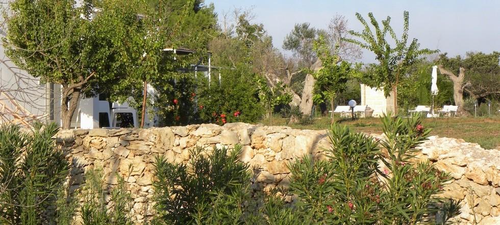 Agriturismo Faresalento  vista giardino